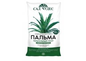 Пальма торфогрунт 5л