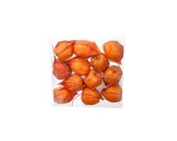 Набор физалиса искусственного D3,5*6см (12шт) оранжевый