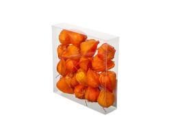 Набор физалиса искусственного D3,5*4см (18шт) оранжевый