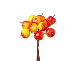 Набор яблок на вставке D2.2*2.5*L11см (12шт) красный+желтый арт.KFQ4646A
