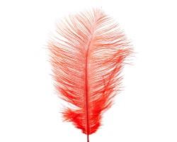 Набор перьев страус (3шт) 20-25см оранжевый