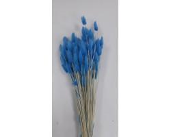 Лагурус стабилизированный крашенный светло-синий