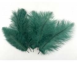 Набор перьев страуса 20-25см (5шт) изумрудный 5500012490225