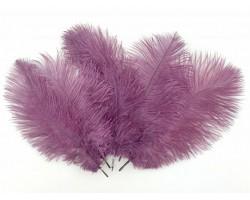 Набор перьев страуса 20-25см (5шт) пыльно-сиреневый 5500012490226