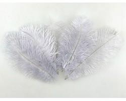 Набор перьев страуса 20-25см (5шт) серый 5500012490227