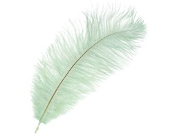 Набор перьев страуса 20-25см (5шт) зеленый 5500011723381