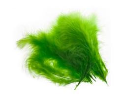Набор перьев (24шт) 19см зеленый