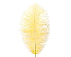 Набор перьев страус (3шт) 20-25см желтый