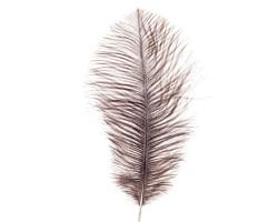 Набор перьев страус (3шт) 20-25см коричневый/серый