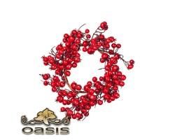 Венок из ягод, D25см, красный арт.HE3843.10W