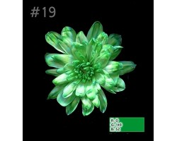 Краска для окрашивания срезанных цветов 1л 19 зеленый