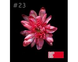 Краска для окрашивания срезанных цветов 1л 23 рождественская красная