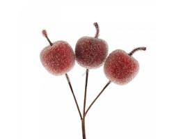 Яблоки засахаренные на вставке 3,5см (3шт) 5500011733250